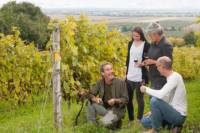 Small-Group Quebec Wine Tour from Montreal with Optional Gourmet Lunch and Cheese Tasting