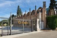 Small-Group Torres, Codorníu and Jean Leon Wineries Day Trip from Barcelona with Tastings and Brunch