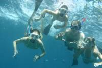 Snorkel and Sightseeing Tour on the Na Pali Explorer