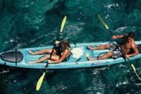 Snorkel, Kayak and Dolphin Experience in the Big Island's Kealakekua Bay