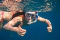 Snorkeling at Palmilla Bay from San Jose del Cabo