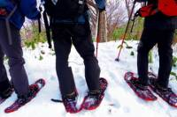 Snowshoe Hiking Tour Including Lunch from Sapporo