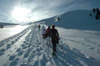Snowshoe Tour from Interlaken