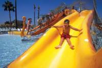 Soak City Admission with Transport from Anaheim