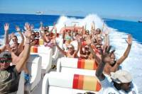 Speed Boat Tour Including Snorkeling and Gibbs Cay Island