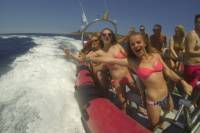 Speed Boat Trip and Snorkel Cave Tour in Ibiza