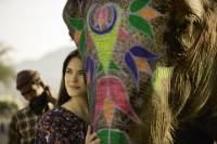 Spend Half-day with Elephants from Jaipur
