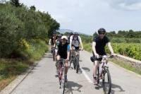 Split Bike Tour: City Highlights by Standard or Electric Bike