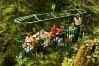 St Lucia Aerial Tram & Rainforest Tour