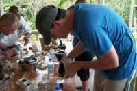 St Lucia Hotel Chocolat Boucan Tour with Visit to Sulphur Springs and Snorkeling at Petit Piton
