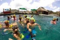 St Maarten Snorkeling Tour