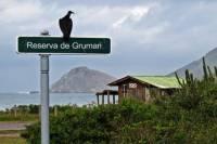 Surf Adventure Tour in Rio de Janeiro