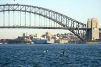 Sydney Harbour Kayak Tours