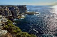 Sydney Royal National Park Coastal Photography Tour