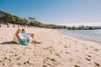 Sydney Shore Excursion: Half-Day Sydney City Highlights with Lunch at Bondi Beach