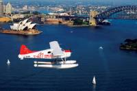 Sydney Shore Excursion: Scenic Seaplane Tour Over Sydney with Optional Lunch