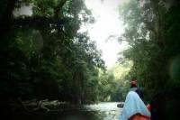 Taman Negara Rainforest Day Tour