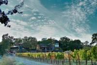 Tasting Experience at Gracianna Winery