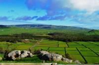 Terceira Island Van tour