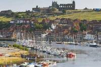 The Moors and Whitby in Winter Guided Day Tour from York