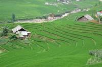 Topas Ecolodge and Red Dao Village Day Tour from Sapa Town