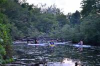 Toronto Islands Stand-Up Paddleboarding Tour
