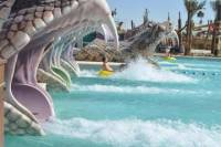 Tour of Yas Island Water World from Dubai