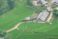 Trekking Day Trip to Ban Ho Village from Sapa