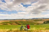 Tuscan Country Bike Tour from Florence Including Wine and Olive Oil Tastings