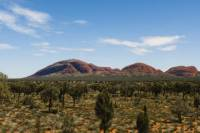 Uluru Sunset and Kata Tjuta Tour with Optional Outback Barbecue Dinner