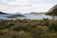 Ushuaia Shore Excursion: Private Tour of Tierra del Fuego National Park