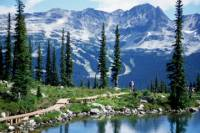 Vancouver Shore Excursion: Whistler Day Trip from Vancouver