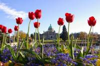 Viator Exclusive: 2-day Victoria Tour from Vancouver including Butchart Gardens