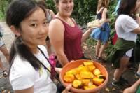 Volunteer Program and Tour at Wildlife Rescue Center in Costa Rica