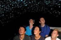 Waitomo Glowworm Caves Discovery Tour from Rotorua