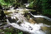 """Water Route"""" - Hiking Tour in Monchique """""""