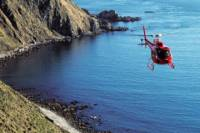 Wellington Capital Views Helicopter Flight