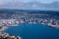 Wellington Shore Excursion: City Sightseeing Tour