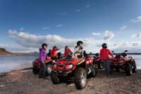 Whale Watching Cruise and Quad Bike Adventure from Reykjavik