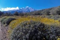 Wildlands Preserve Nature Tour