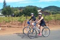 Wine Country Sip 'n' Cycle Bike Tour