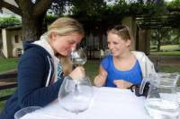 Wine Cycling Tour in Franschhoek