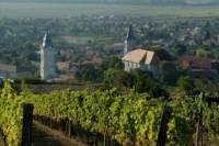 Wine Tasting Tour to Tokaj from Budapest - Heritage of Hungary