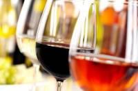 Wine Tour Douro Region