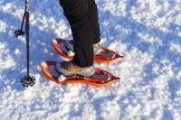 Winter Nordic Walking in Cortina d'Ampezzo