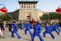 Xi'an Private Day Tour: City Wall, Great Mosque, Shaanxi History Museum, and Big Wild Goose Pagoda