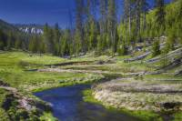 Yellowstone National Park Small-Group Wildlife Safari by Jeep