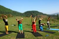 Yoga Experience Day Trip with Private Transfer From Kathmandu