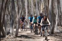 You Yangs Regional Park Mountain Bike Adventure from Melbourne