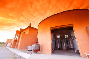 1.30 hour of Vineyard-Winery Tour and Wine Tasting